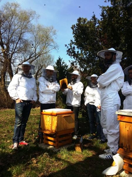 Warsztaty pszczelarskie dla dorosłych w Wilanowie