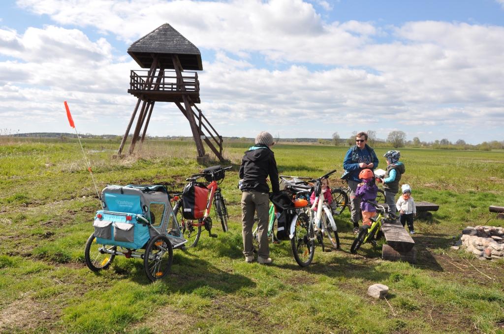 Wycieczka rowerowa z dziećmi w Narwiańskim Parku Narodowym.