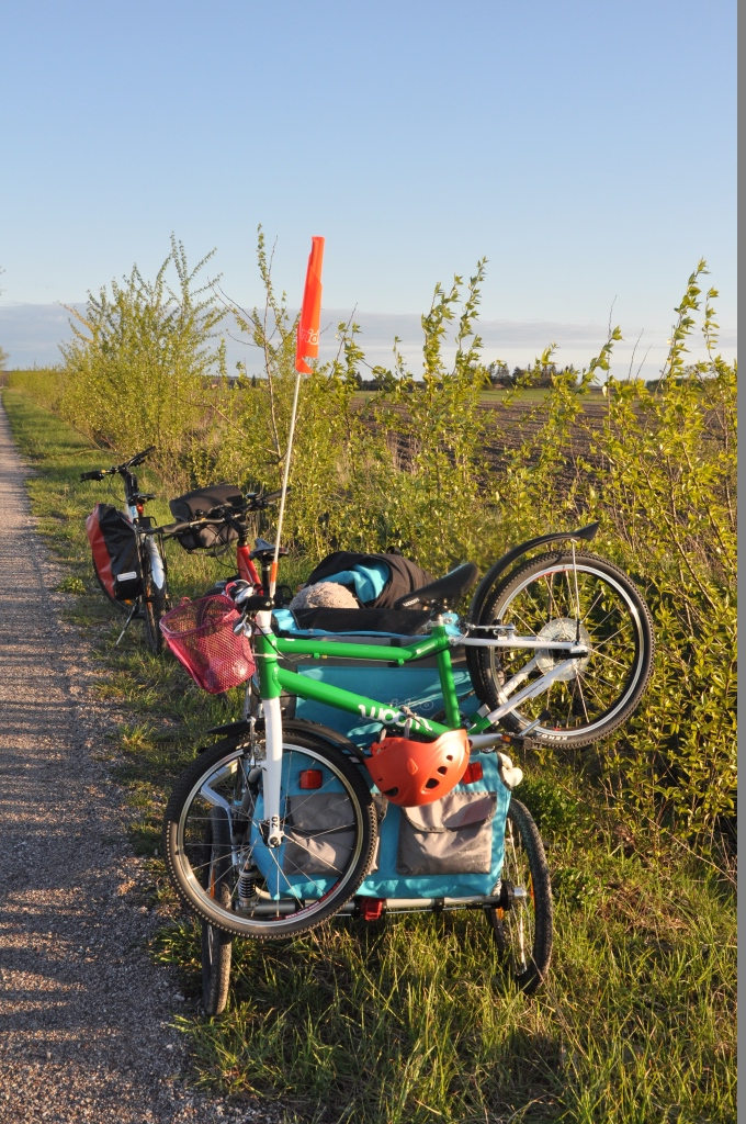 Lekki rower WOOM4 zamontowany na przyczepce rowerowej Qeridoo Speedkid 2.