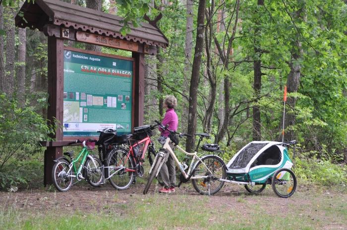 Wycieczka rowerowa z dziećmi - Augustów - Postój przy tablicy Szlaku Orła Białego.