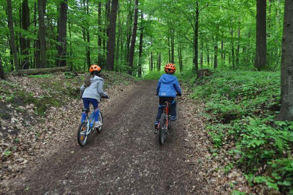 Rezerwat Parkowe za Złotym Potokiem - pagórkowaty teren wymagał sporego wysiłku od dzieci.