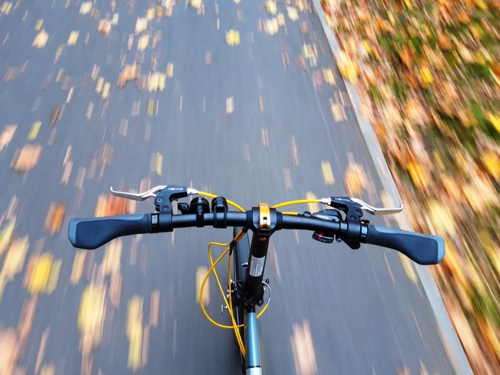 Rower składany Dahon Vitesse D8